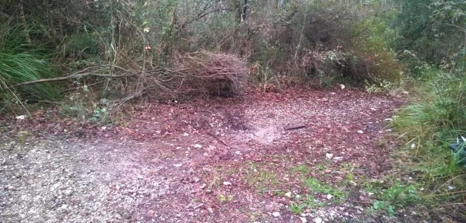 Ausonia / Bonificata la discarica di amianto nella pineta di Selvacava