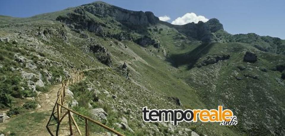 Spigno Saturnia / Taglio alberi in zona protetta: sinergia tra Comune e Parco dei Monti Aurunci