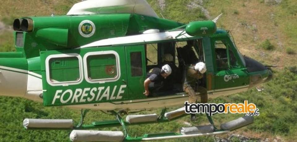 Cassino/ Mozione per salvare il Corpo Forestale dello Stato