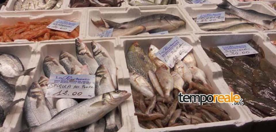 Gaeta / Il Tar blocca il trasferimento del mercato del pesce