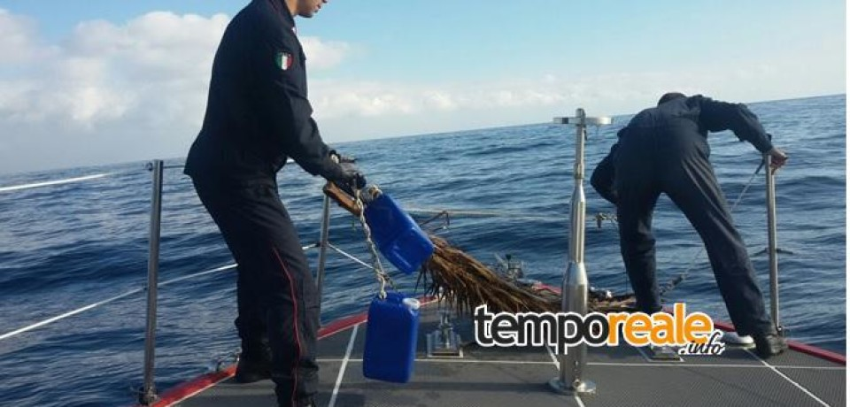 Ventotene / Sequestrata rete da pesca illegale