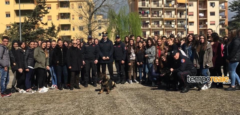"""Cassino / Liceo """"M.T. Varrone"""", incontro degli studenti con l'Arma dei Carabinieri"""