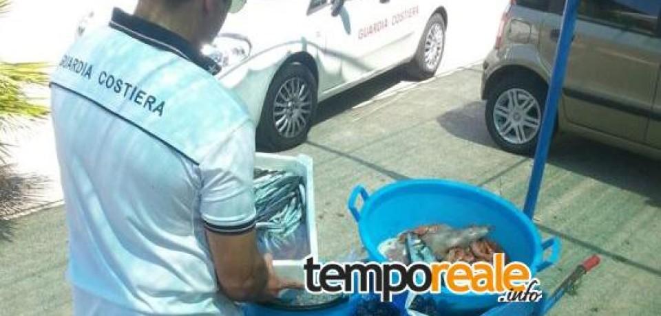 Gaeta / Vendeva abusivamente prodotti ittici sulla spiaggia di Sant'Agostino, multato di 6.500 euro