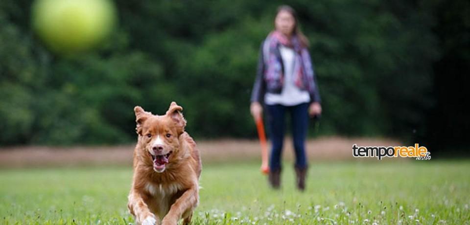 Minturno / Un Dog Park al Parco Recillo, la proposta