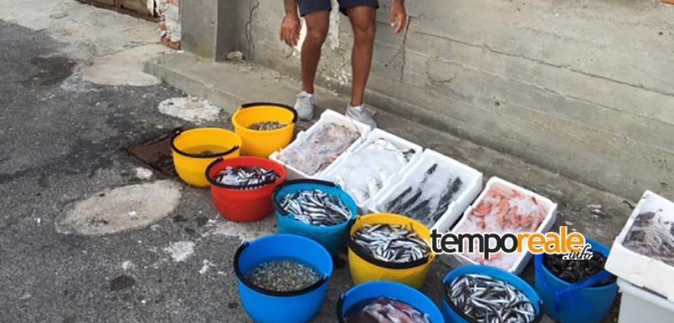Pescato, la capitaneria eleva multe a Cassino, Fondi e Minturno per 7.500 euro