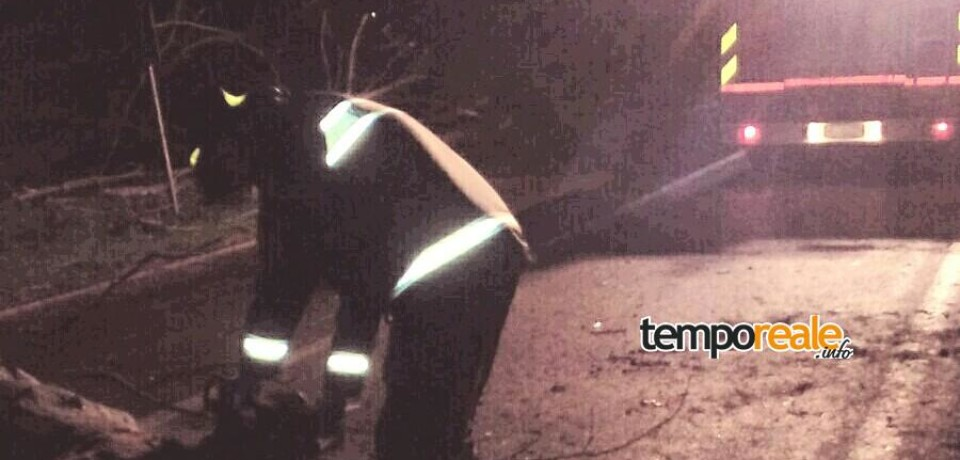 Monte San Biagio / Maltempo, automobilista ferito per la caduta di un albero