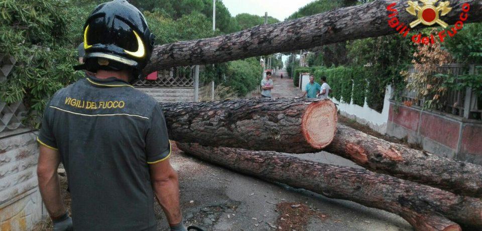 Latina / Maltempo, i vigili del fuoco impegnati nell'intera provincia, stop ai traghetti per le isole