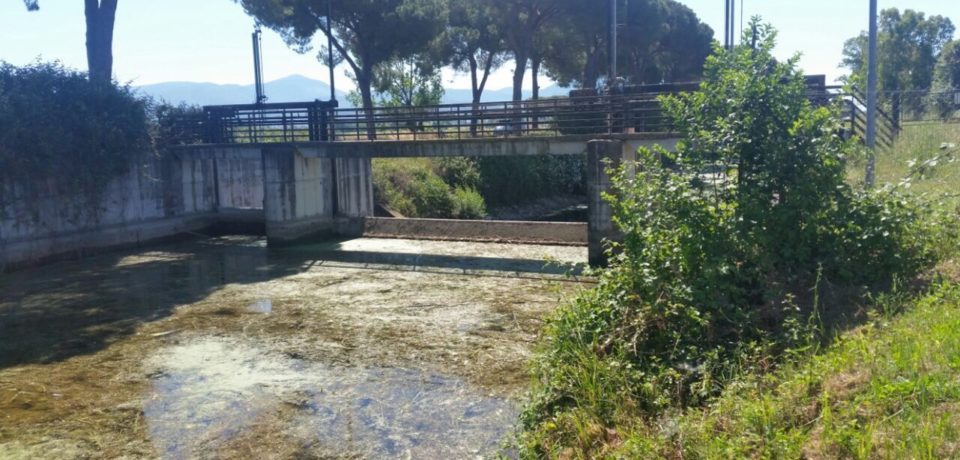 Siccità, i Consorzi di Bonifica del Lazio chiedono il potenziamento della rete irrigua