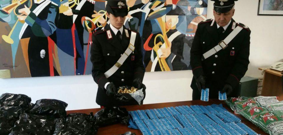Aprilia / Deteneva 8 kg di bulbi di papavero da oppio e 4000 pasticche: arrestato pakistano