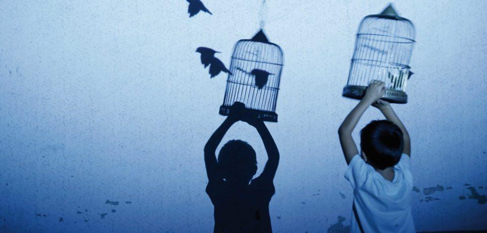 """Formia / Al via la 5^ edizione del Festival Biennale di arte ambientale """"Seminaria Sogninterra"""""""