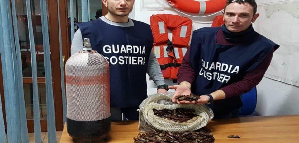 Minturno / Pesca di frodo, sequestrati 20 chili di datteri di mare: una denuncia