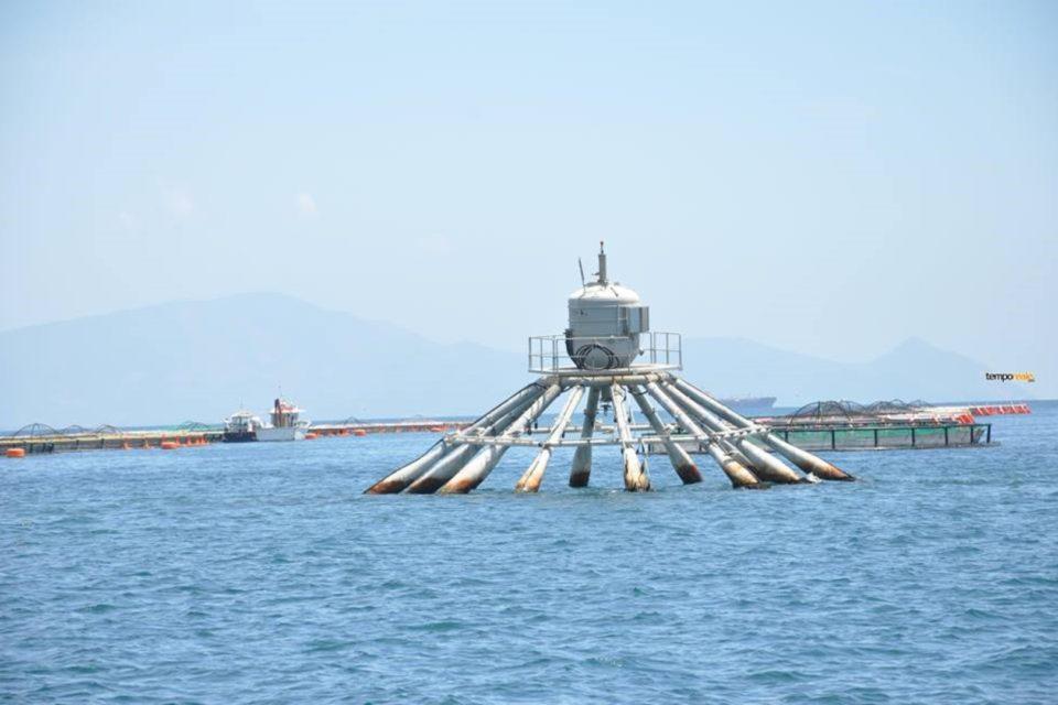Formia / Delocalizzazione impianti di itticoltura, i commenti politici post consiglio comunale