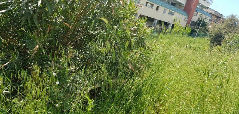 Formia / Il quartiere di Rio Fresco Scacciagalline nel degrado, l'appello dei residenti