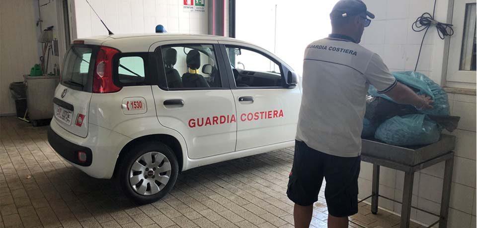Formia / La Guardia Costiera sequestra 70 kg di cozze raccolte sulla scogliera della Marina di Levante