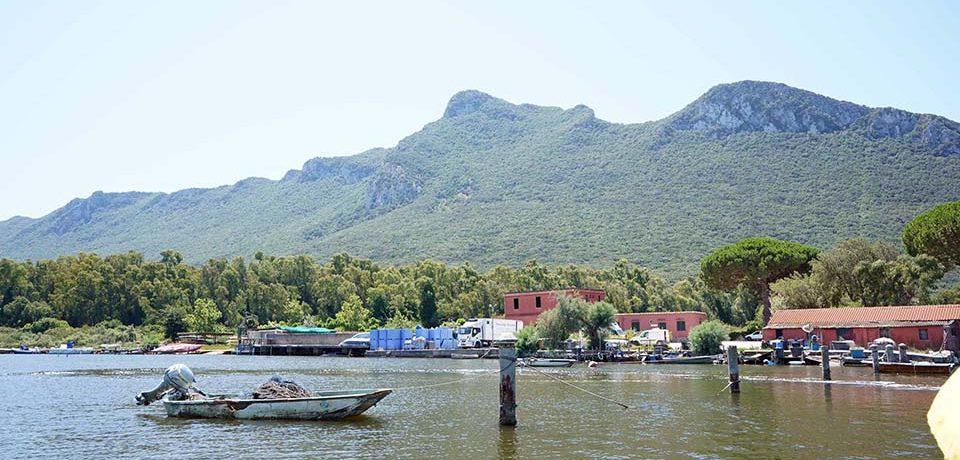 Sabaudia / Dati di Goletta Verde sul Lago di Paola, il Comune predispone immediate verifiche