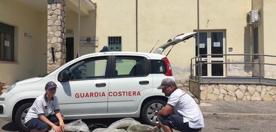 Formia / Sequestrati 160 chili di cozze, multati 5 pescatori per oltre 32mila euro