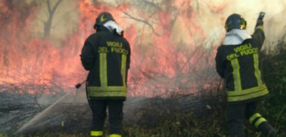 Oltre 30 incendi in provincia di Latina, vigili del fuoco in azione