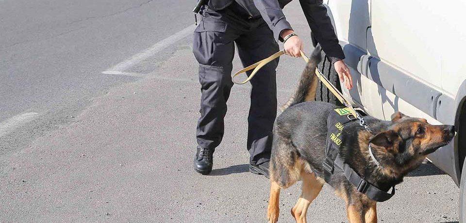 Formia / Sequestrati 200 grammi di hashish, arrestato uno spacciatore