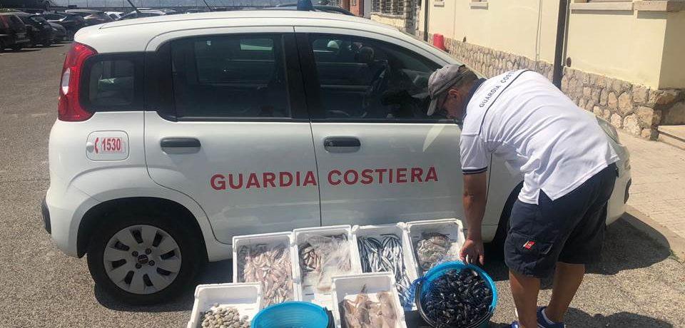 Formia / Altro sequestro di prodotti ittici venduto in spiaggia sotto il sole tra i bagnanti