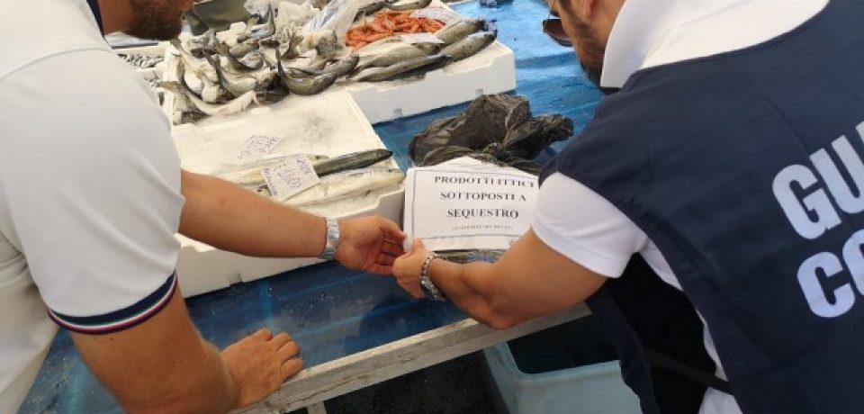 Gaeta / Maxi operazione sulla filiera della pesca, 22 sequestri
