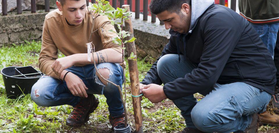 """Itri / Bimbi entusiasti per la """"Festa dell'albero"""""""