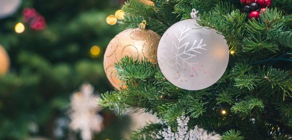 """Formia / Prima edizione della mostra-concorso """"Il mio Albero di Natale Green"""""""